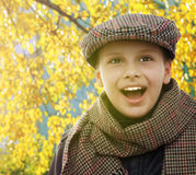 Child happy smile portrait autumn leaves Stock Photos
