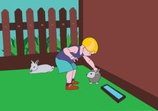 Child and hare. The boy irons a hare in a zoo,about a fence, a summer residence Royalty Free Stock Images