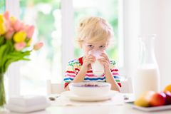 Child eating breakfast. Kid with milk and cereal. Child having breakfast. Kid drinking milk and eating cereal with fruit. Little boy at white dining table in royalty free stock photography