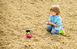 Child having fun with little shovel and plant in pot. Planting in field. Little helper in garden. Boy planting flower in. Field digging ground. Work at farm royalty free stock photo