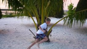 The child having fun runs around palm on the shore of a tropical sea stock video footage