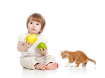 Child with healthy food apples and Scottish kitten Stock Image
