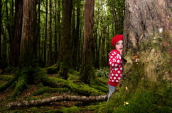 Child hid behind a tree Royalty Free Stock Photo