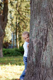 Child hid behind a tree in summer park Royalty Free Stock Photography