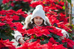 Child hidden among the poinsettias Royalty Free Stock Images