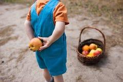 Child hide orange fruits picnic healthy concept. Child hide orange fruits picnic concept. Healthcare lifestyle. Happy childhood Royalty Free Stock Photo