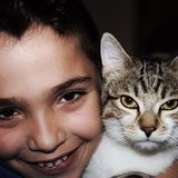 child with his cat in photographic pose royalty free stock photography
