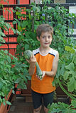 Child on his orchard in fact with pots on a terrace of an apartme Stock Photography