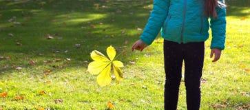 Child holding autumn leaf Stock Photo