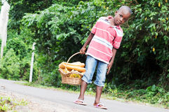 Child holding a basket of food. Royalty Free Stock Photo