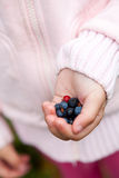 Child holding berries Royalty Free Stock Photo