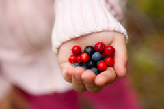 Child holding berries Royalty Free Stock Images