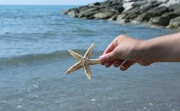 Child holding big starfish close to the sea cliff Royalty Free Stock Photo