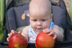 Child holding both hands two apples Royalty Free Stock Photography