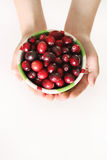 Child holding a bowl of fresh cranberries vertical Stock Image