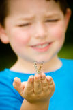 Child holding butterfly. Spring concept with close up of a painted lady butterfly, Vanessa cardui, being held by child playing outdoors in nature stock image