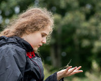 Child holding a dragonfly Royalty Free Stock Image