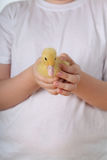Child holding a duckling Royalty Free Stock Photography