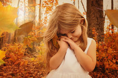Child Holding Fall Leaf in Woods Stock Images