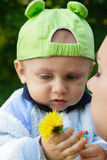 Child holding a flower Royalty Free Stock Photos
