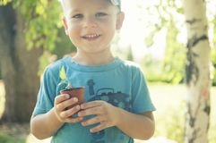 The child is holding a flower pot with a small plant stock photos