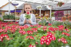Child holding flower pot Stock Images