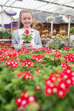 Child holding a flower pot Stock Photography