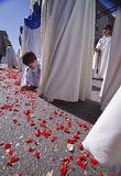 Child holding the ground rose petals during a Holy week procession Stock Photography