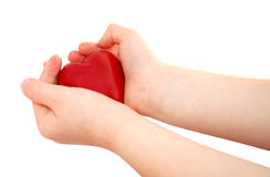 Child holding heart. Hands holding a heart isolated on white Stock Photography