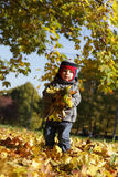 Child holding leaves Stock Photography