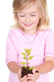 Child holding a plant Royalty Free Stock Photos