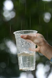 Child holding a plastic cup,. Hand of a young child holding a plastic cup, collecting rain water royalty free stock photos