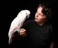 Child Holding Playful Bird royalty free stock photos