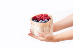 Child, holding raspberries and blueberries, isolated on white. Child, holding raspberries and blueberries in a basket, isolated on white Stock Photos