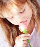 Child holding rose Stock Images