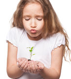 Child holding a sleedling Stock Images