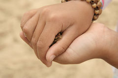 Child holding a small frog Stock Photos