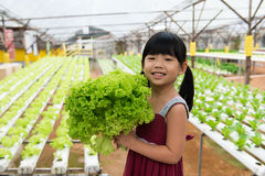 Child holding vegetable Stock Images
