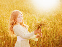 child holding wheat ears at field Stock Photography