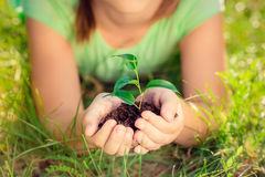 Child holding young plant in hands Stock Images