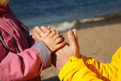 Child holds hand of adult. Royalty Free Stock Images