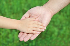 Child holds the hand of the father Stock Image
