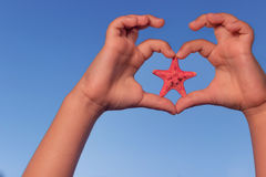 Child holds hands up to sky in the shape of a heart with starfish. Love shape child hands with starfish. Stock Image