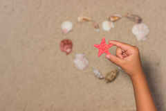 Child holds red starfish. Child hand with starfish. Sea shells on sandy beach. Summer background. Top view Royalty Free Stock Image