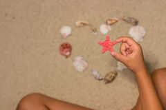 Child holds red starfish. Child hands with starfish. Sea shells on sandy beach. Summer background. Top view Stock Photo