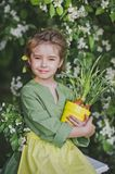 Portrait of a girl against the backdrop of flowering trees 8269. The child holds a tub of sprouted leek Stock Images