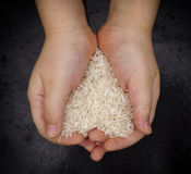 Child holds white rice in his hands Royalty Free Stock Photography