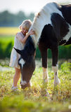 Child and horse in filed. Child with horse outdoor at sunset Royalty Free Stock Photography
