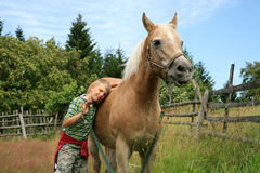 Child and horse haflinger Stock Photo