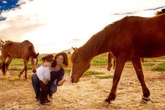 Child with a horse. royalty free stock photo